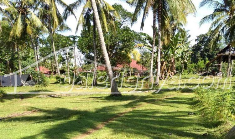 Tanah dijual di Negara, Jembrana Bali